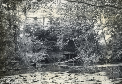 Aqueduct over the Nunney Brook near Hapsford c.190s
