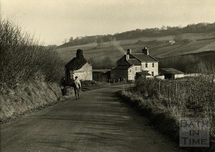 Winter Sunshine. Near Wellow, December 1949