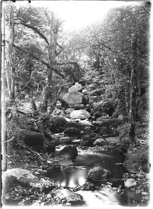 Becky Falls, Dartmoor, Devon, c.1906