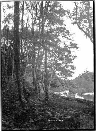 On the Lledr, North Wales c.1920s