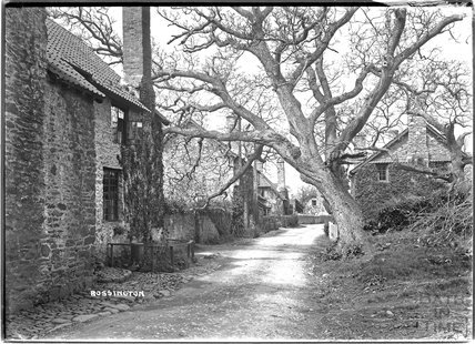 Bossington, near Minehead, Somerset c.1932