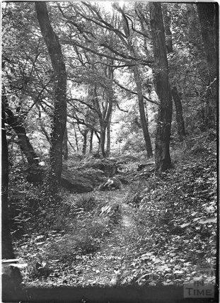 Glen Lyn  Lynton near Lynmouth, Exmoor, Devon c.1910s
