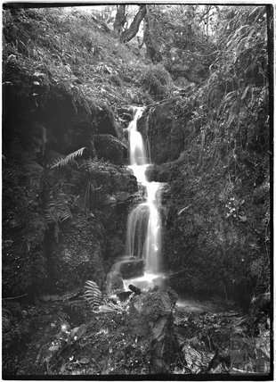 Waterfall at Luccombe, near Minehead, Somerset, c.1920s