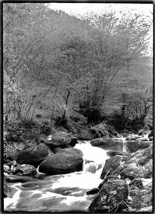 Glen Lyn, near Lynton, Exmoor, Devon, c.1920s