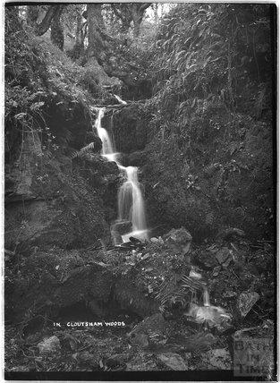 In Cloutsham Woods, near Minehead, Somerset, c.1920s