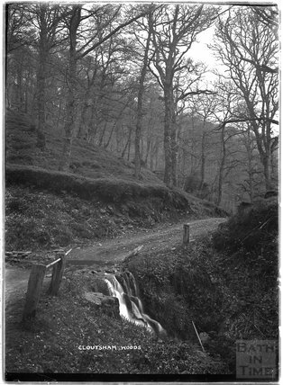 Cloutsham Woods, near Minehead, Somerset, c.1920s