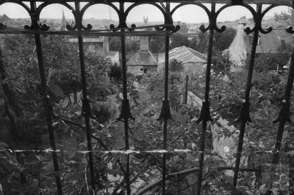 The back garden of 12 Darlington Place 1975