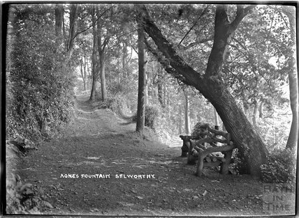 Agnes Fountain and rustic bench, Selworthy, near Minehead, Somerset, 1912