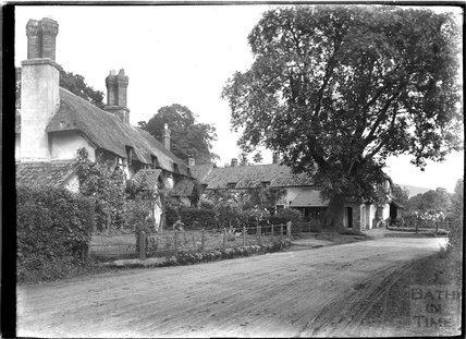 Budleigh Hill near Selworthy, near Minehead, Somerset, c.1912