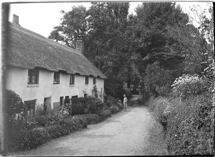 Thatched cottages in Gallox Lane, Dunster, near Minehead, Somerset, c.1910