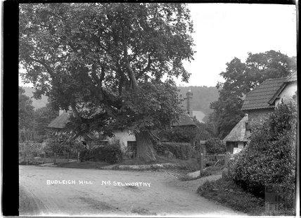 Budleigh Hill, near Selworthy, near Minehead, Somerset, c.1912