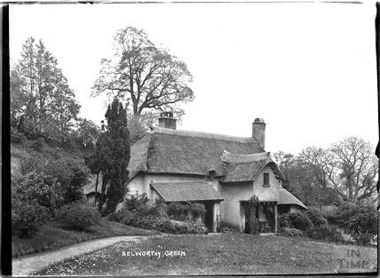 Thatched Cottage, Selworthy Green, Somerset near Minehead, c.1910