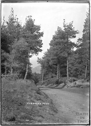 Webber's Post, Cloutsham Woods, near Minehead, Somerset, 1909