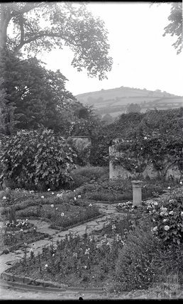 An unidentified garden, c.1915