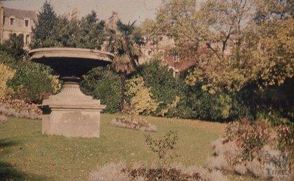 Royal Victoria Park 1951 - 2
