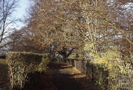 Alexandra Park, 1979