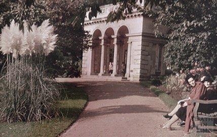 The Botanical Gardens, Royal Victoria Park, 1951 - 2