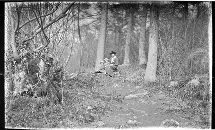 The Photographer's wife and twin boys in Friary Woods, near Freshford c.1913
