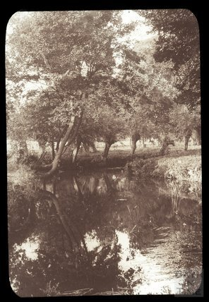 Reflections on an unidentified shady river, c.1910s