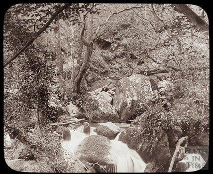 In Glen Lyn, near Lynmouth, c.1910