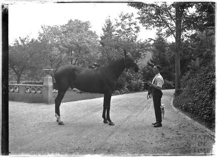 A horse and groom, Monkton House, c.1910s