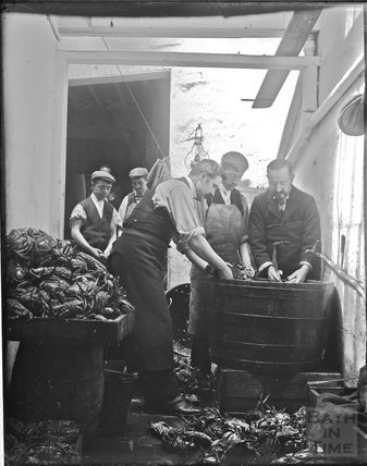 A group of men processing crabs, c.1890s