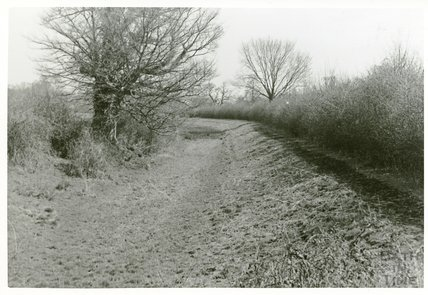 Somersetshire Coal Canal, towards Radford, 5 April 1969