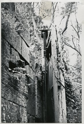 Somersetshire Coal Canal, Combe Hay flight of locks, c.1960s