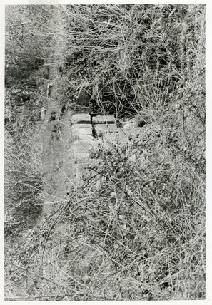 Somersetshire Coal Canal, between Radford and Paulton Basin, 5 April 1969