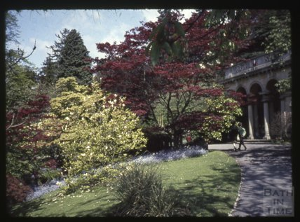 Bath Botanical Gardens, Royal Victoria Park c.1965