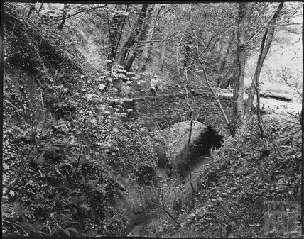 Bridge over ravine in unidentified location, c.1900s