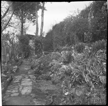 The photographer's extended garden, over the road at Sydney Buildings garden, c.1950s