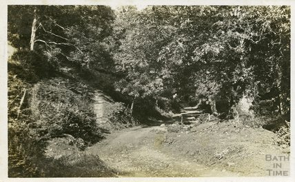 Cloutsham Woods, near Minehead, c.1910