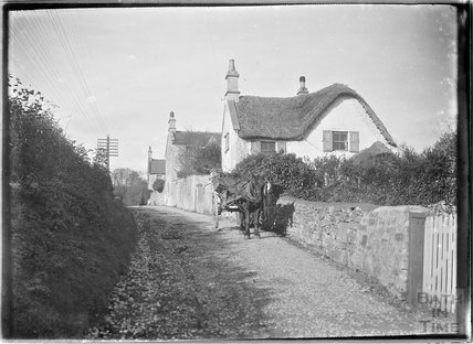 Early thatched cottages with horse & cart, Old Midford Road, c.1910