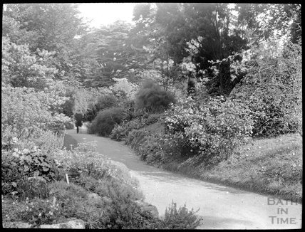 Botanical gardens, Royal Victoria Park, c.1905