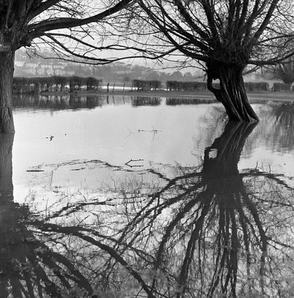The flooded riverside at Batheaston, 22 January 1971