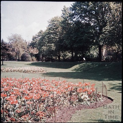 Flowers in Henrietta Park, Bath, spring 1937?
