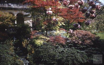 The pavilion at the Botanical Gardens, Royal Victoria Park, Bath, 1953-55