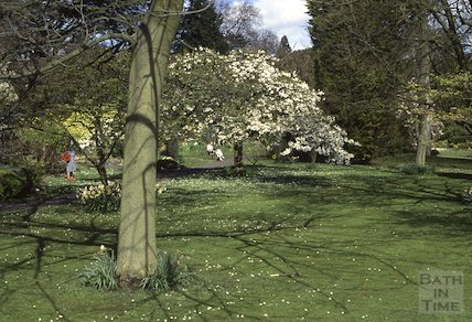 Botanical Gardens, Royal Victoria Park, 1989