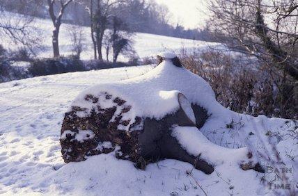 Snow scene, Bath 1991