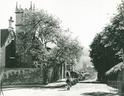 Judas Tree, St. Mary Magdelene Church, Holloway 19 May 1974