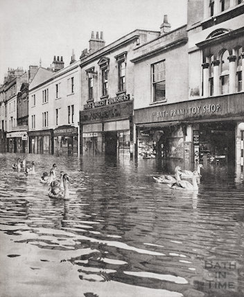 Swans on Southgate Street, Bath during the floods of December 1960
