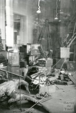 Bath Reference Library, Queen Square premises - interior showing glass cases, c.1960
