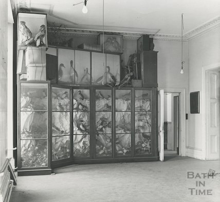 Bath Reference Library, Queen Square premises - exhibits and showcases, 1960