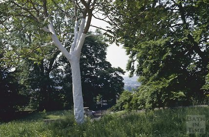 Royal Victoria Park, art installation, June 1992