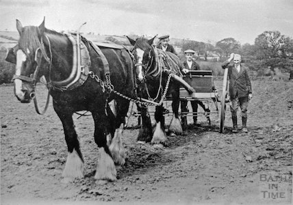 Shire horses and farmers in Radstock?, c.1910