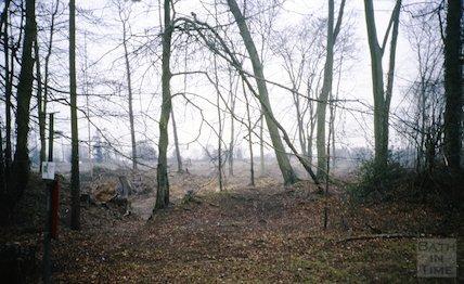 Rainbow Woods, Bath, c.1987