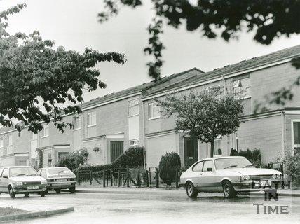 Blagdon Park, Southdown, June 1991