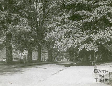 Royal Victoria Park, Bath, The Avenue, c.1960s?