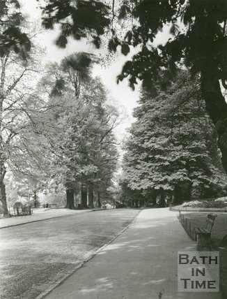 The Avenue, Royal Victoria Park, Bath, c.1960s?